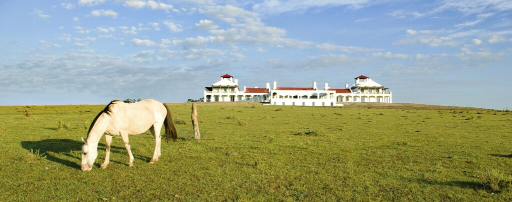 Estancia Vik, Uruguay | Plan South America