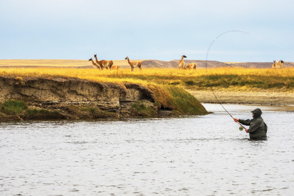 Gone Fishing in South America