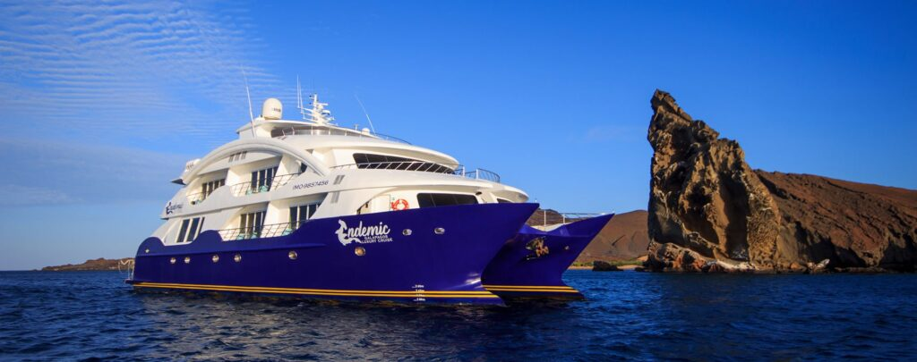 Endemic, The Galapagos   Plan South America